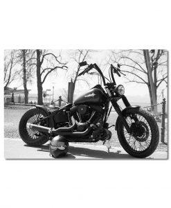 Canvastaulu Harley Davidson
