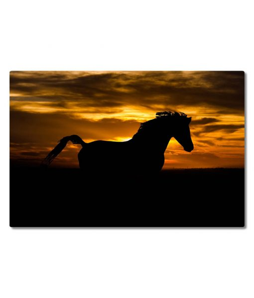 Hevonen_auringonlasku_siluetti_vaaka