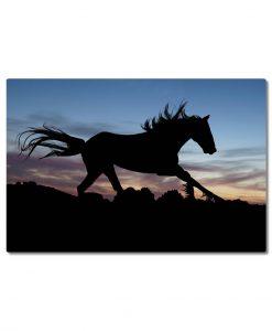 hevonen laukkaa canvastaulu