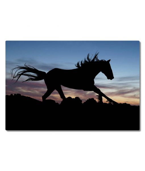 Hevonen_laukkaa_siluetti_vaaka